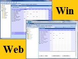 Video: Windows and Web Timesheet